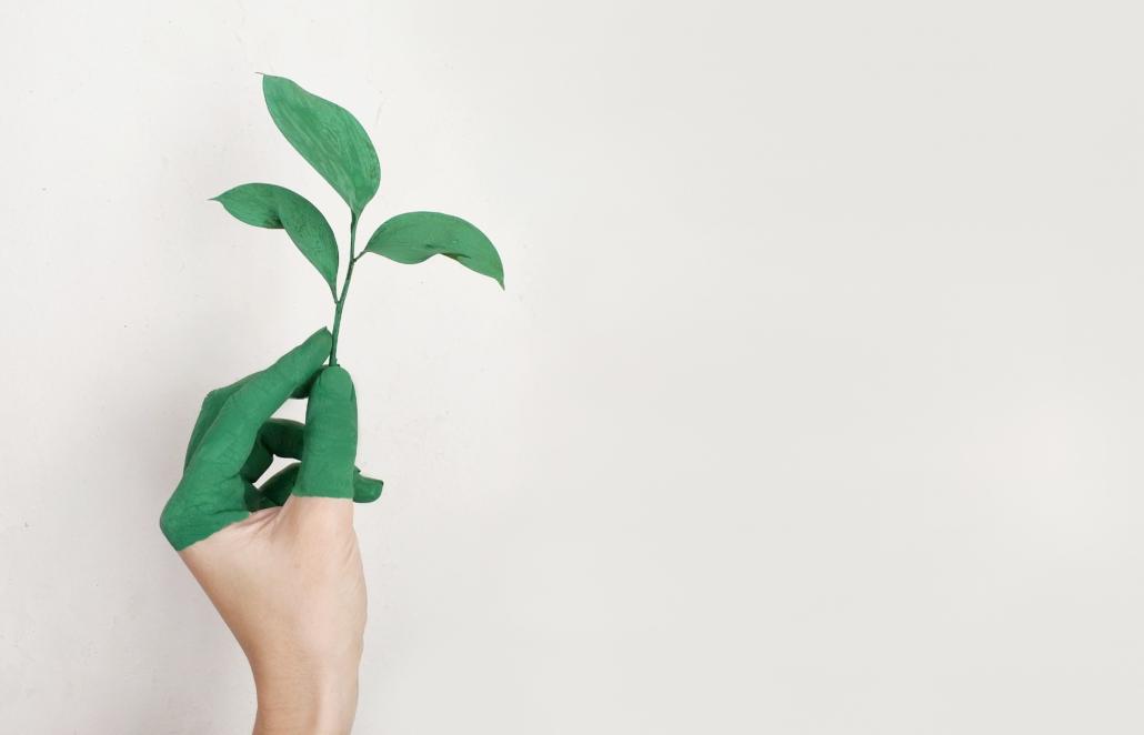 Een ecologische woning is een goed begin, maar wat kan je zelf nog doen om dit door te trekken naar jouw interieur?